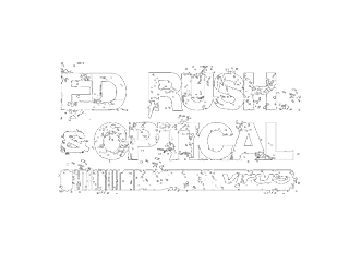 Ed Rush and Optical